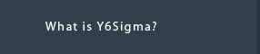 What is Y6Sigma?